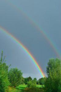Motivation Rainbow